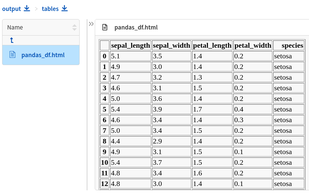 Table preview from pandas DataFrame in the experiment